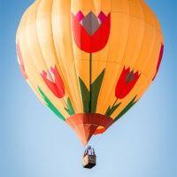 """Полет на воздушном шаре """"Предложение руки""""."""