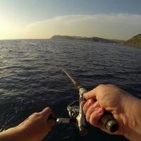 Рыбалка Skyline