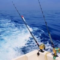Морская рыбалка на Яхтах и Катерах