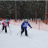 Лыжная база «Метелица»