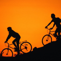 Прокат велосиподов на лыжной базе «Метелица»