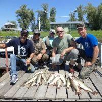 Рыбалка на Волге и Волго-Ахтубинской пойме