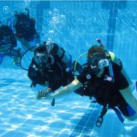 Погружения с клубом «diving-volga» 11.03.2016