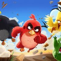 Angry Birds. СБС Мегамолл