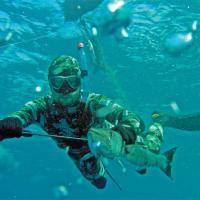 Подводная охота СД-Дайвинг клуб