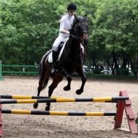 Катание на лошадях КСК Орион