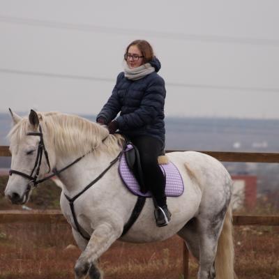 занятия конным спортом